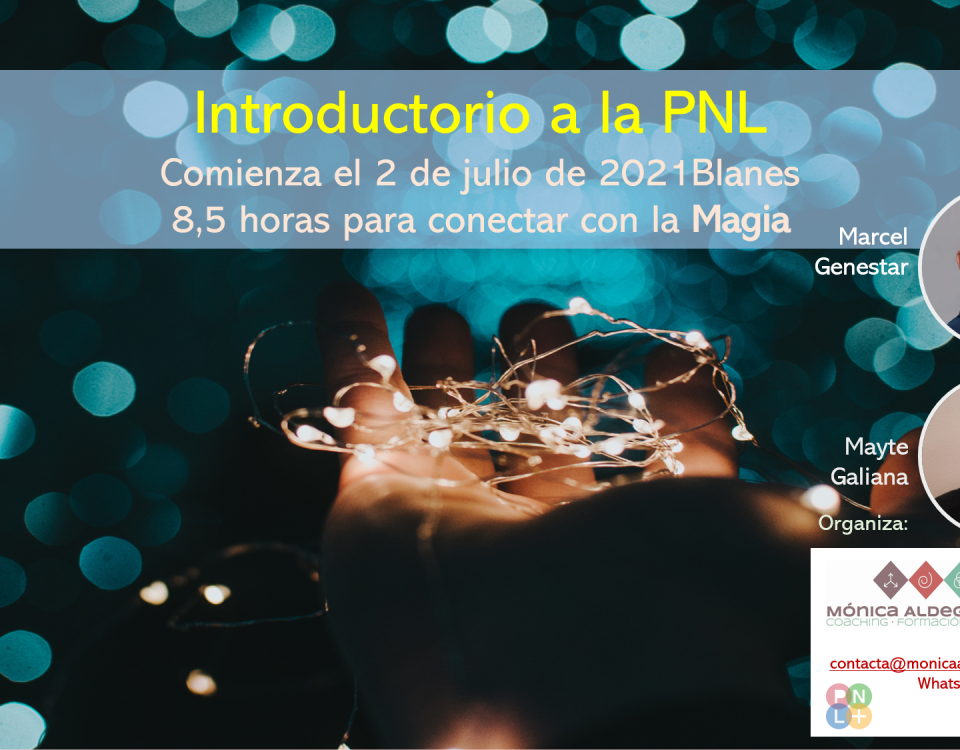 PNL Introductorio Blanes